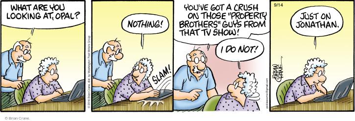 Comic Strip Brian Crane  Pickles 2016-09-14 program