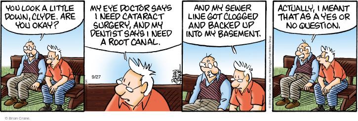 Comic Strip Brian Crane  Pickles 2016-09-27 yes no question