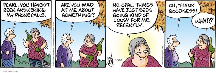 Comic Strip Brian Crane  Pickles 2016-10-18 goodness