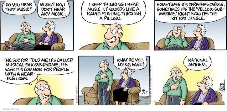 Comic Strip Brian Crane  Pickles 2016-11-27 hearing loss