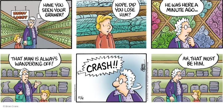 Comic Strip Brian Crane  Pickles 2016-12-04 granddad