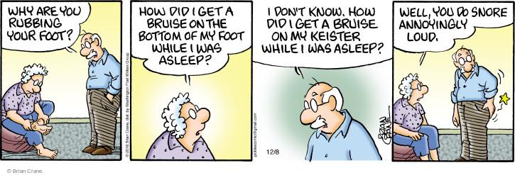 Comic Strip Brian Crane  Pickles 2016-12-08 foot