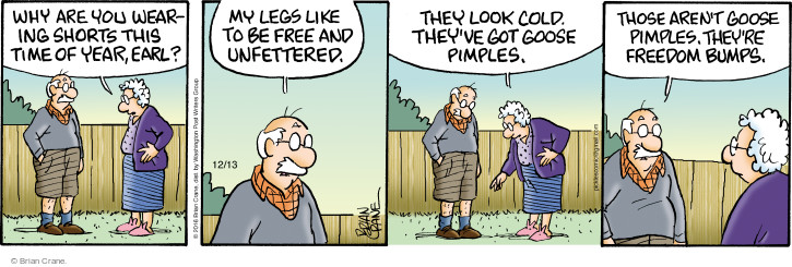 Comic Strip Brian Crane  Pickles 2016-12-13 seasonal