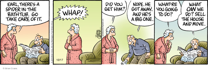 Comic Strip Brian Crane  Pickles 2016-12-17 one
