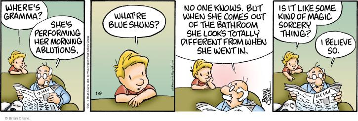 Comic Strip Brian Crane  Pickles 2017-01-09 woman