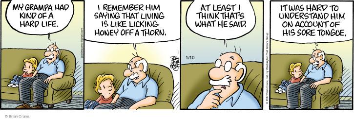 Comic Strip Brian Crane  Pickles 2017-01-10 granddad