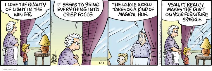 Comic Strip Brian Crane  Pickles 2017-01-14 sparkle