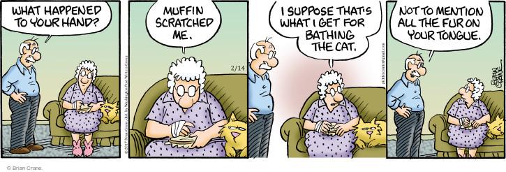Comic Strip Brian Crane  Pickles 2017-02-14 cat fur