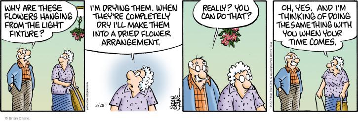 Comic Strip Brian Crane  Pickles 2017-03-28 light