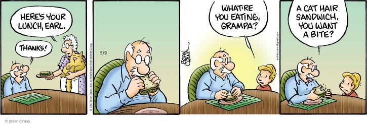 Comic Strip Brian Crane  Pickles 2017-05-09 sandwich