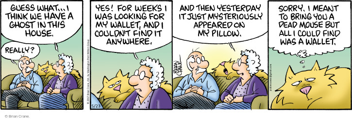 Comic Strip Brian Crane  Pickles 2017-05-23 pillow