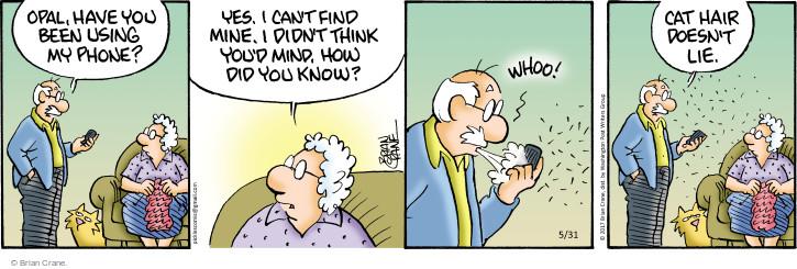 Comic Strip Brian Crane  Pickles 2017-05-31 hair loss