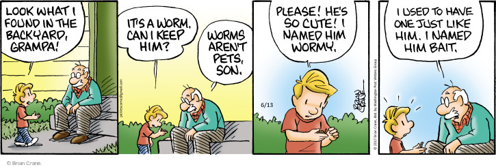 Comic Strip Brian Crane  Pickles 2017-06-13 pet fish