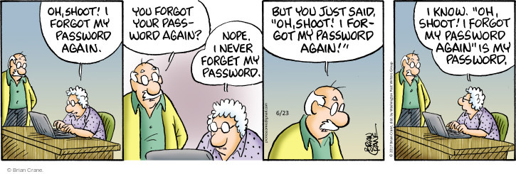 Comic Strip Brian Crane  Pickles 2017-06-23 forget password