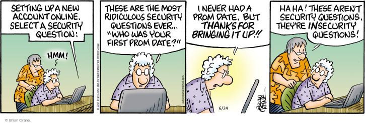 Comic Strip Brian Crane  Pickles 2017-06-24 online security