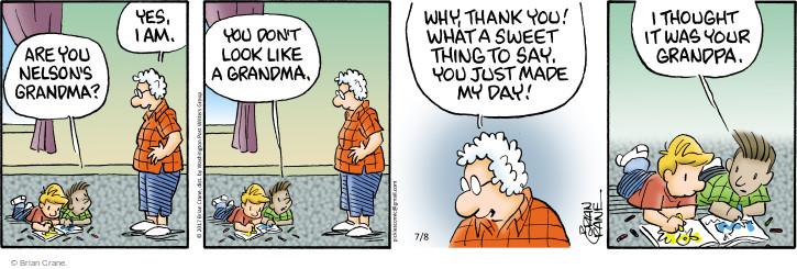 Comic Strip Brian Crane  Pickles 2017-07-08 grandpa