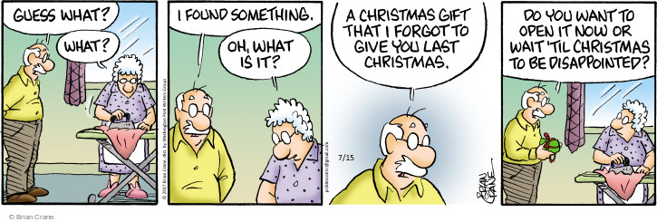 Comic Strip Brian Crane  Pickles 2017-07-15 Christmas gift