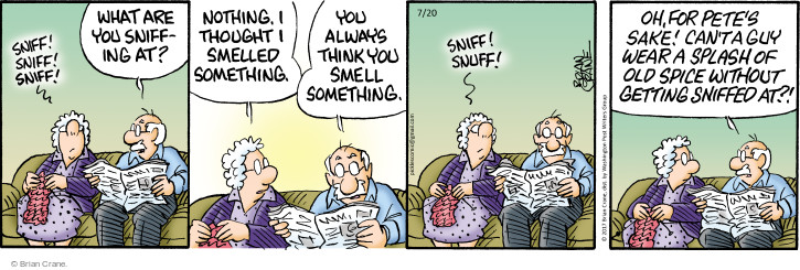 Comic Strip Brian Crane  Pickles 2017-07-20 guy