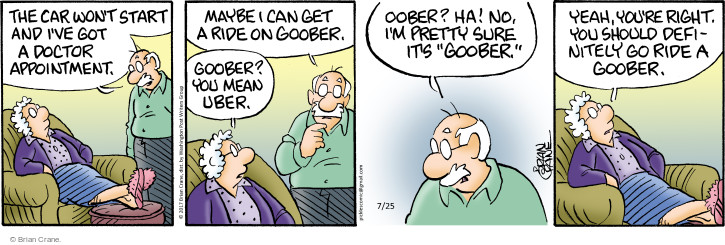 Comic Strip Brian Crane  Pickles 2017-07-25 rid