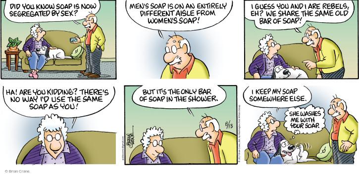 Comic Strip Brian Crane  Pickles 2017-08-13 share