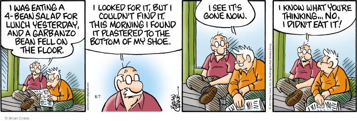 Comic Strip Brian Crane  Pickles 2017-08-07 fall