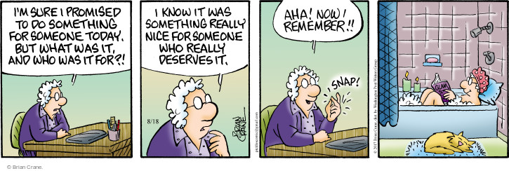 Comic Strip Brian Crane  Pickles 2017-08-18 care