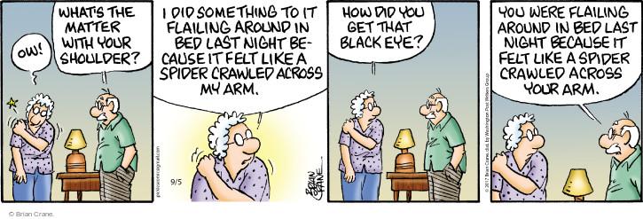 Comic Strip Brian Crane  Pickles 2017-09-05 crawl