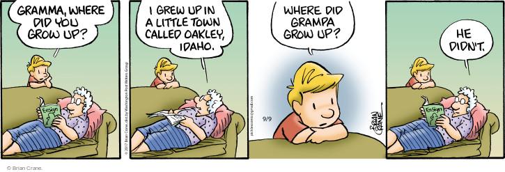 Comic Strip Brian Crane  Pickles 2017-09-09 town