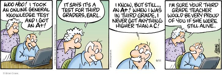 online pickel comic
