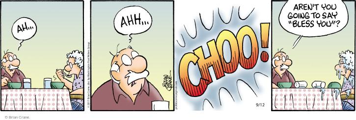 Comic Strip Brian Crane  Pickles 2017-09-12 sneeze