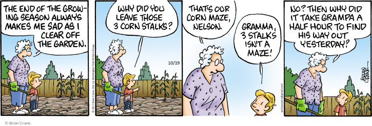 The end of the growing season always makes me sad as I clear off the garden. Why did you leave those 3 corn stalks? That's our corn maze, Nelson. Gramma, 3 stalks isnt a maze! No? Then why did it take grampa a half hour to find his way out yesterday?