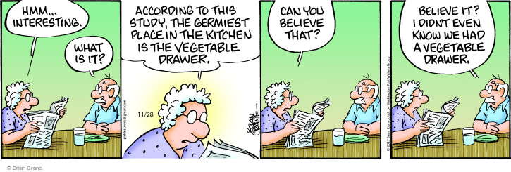 Comic Strip Brian Crane  Pickles 2017-11-28 kitchen drawer