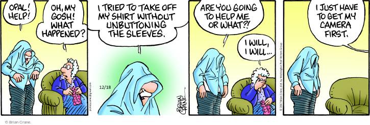 Comic Strip Brian Crane  Pickles 2017-12-18 sleeve