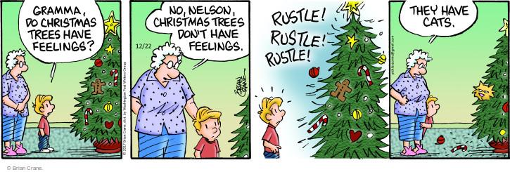 Comic Strip Brian Crane  Pickles 2017-12-22 Christmas tree