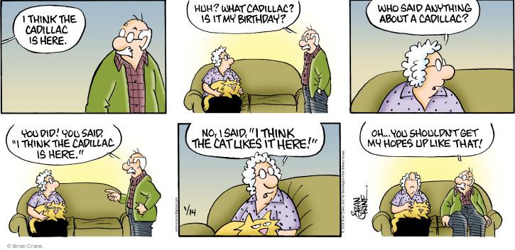Comic Strip Brian Crane  Pickles 2018-01-14 cat