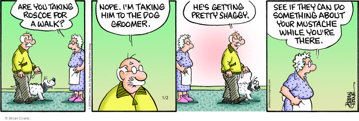 Comic Strip Brian Crane  Pickles 2018-01-02 grooming