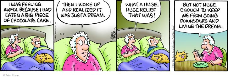 Comic Strip Brian Crane  Pickles 2018-01-03 wake up