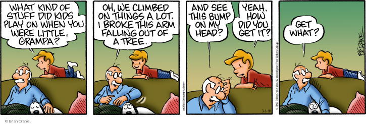 Comic Strip Brian Crane  Pickles 2018-03-01 climb tree