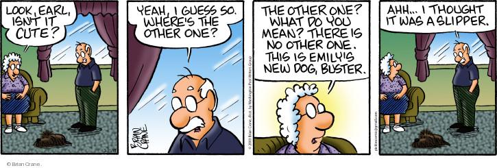 Comic Strip Brian Crane  Pickles 2018-03-31 Earl