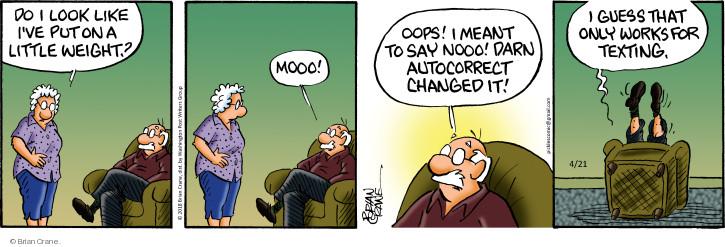 Comic Strip Brian Crane  Pickles 2018-04-21 darn