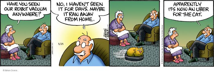 Comic Strip Brian Crane  Pickles 2018-05-25 cat
