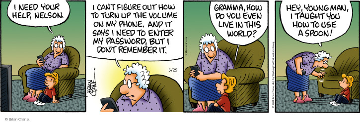 Comic Strip Brian Crane  Pickles 2018-05-29 remember password