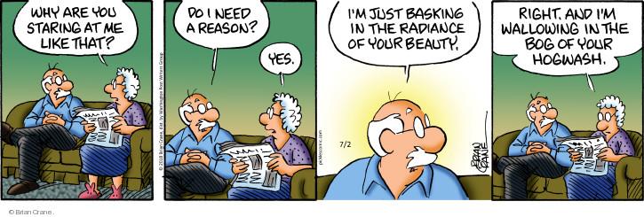 Comic Strip Brian Crane  Pickles 2018-07-02 reason