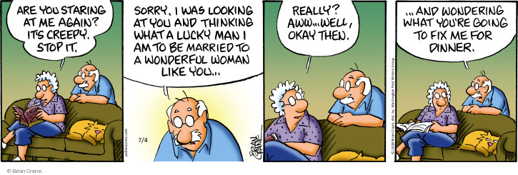 Comic Strip Brian Crane  Pickles 2018-07-04 married couple