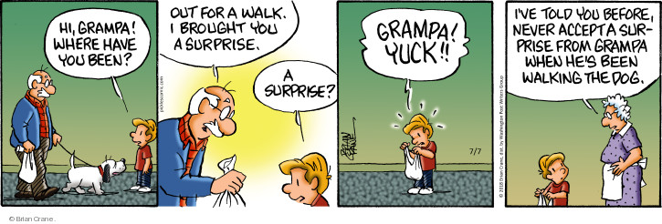 Comic Strip Brian Crane  Pickles 2018-07-07 grandpa