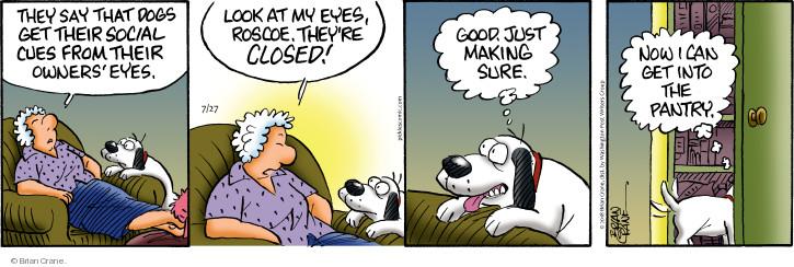 Comic Strip Brian Crane  Pickles 2018-07-27 eye