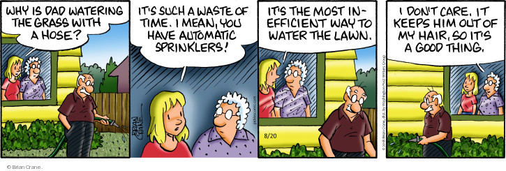 Comic Strip Brian Crane  Pickles 2018-08-20 water