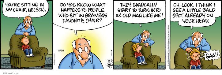 Comic Strip Brian Crane  Pickles 2018-08-30 grandchild