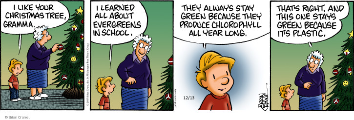 Comic Strip Brian Crane  Pickles 2018-12-13 artificial tree