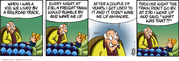Comic Strip Brian Crane  Pickles 2018-12-17 night